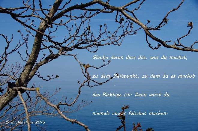 postcard 12_glaube daran Kopie